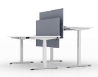 Pair of adjustable height white office tables with t-shaped legs and grey privacy screens