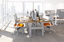 Sit stand office benching system with privacy panels and task chairs